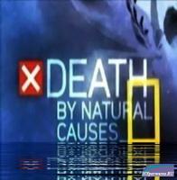 Смерть по естественным причинам  / Death by natural causes-Death on the water (2009) SATRip