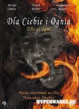 Тебе и огню / Dla Ciebie i Ognia (2008/DVDRip/1500MB)