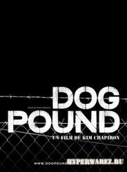 Загон для собак / Dog Pound (2010) DVDRip/Eng