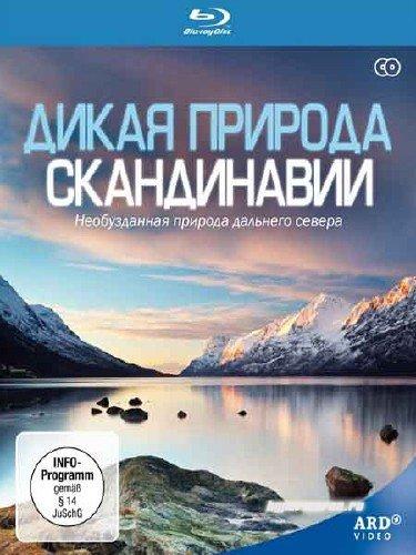 Дикая природа Скандинавии / Wild Scandinavia  Wildes Skandinavien (2011) BDRip