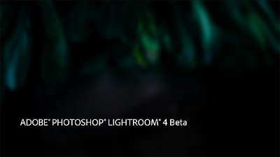 Adobe Lightroom 4 Beta 2012 [eng]